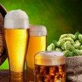Вчені визнали пиво найкориснішим в світі напоєм