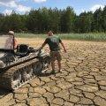 В Іршанську екологи врятували двох лосів. ФОТО