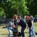На Смолянському військовому кладовищі висадили 54 дерева із іменами-пов'язками загиблих Героїв