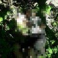 У Житомирі знайшли тіло молодика, якого побили до смерті