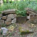 """""""Повинно бути не гірше, ніж Личаківський цвинтар"""": у Житомирі реставрують польське кладовище"""