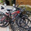 В Україні влаштування велодоріжок з вересня стане обов'язковим – уряд