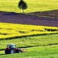 До місцевих бюджетів Житомирської області забезпечено понад 81 млн. грн. рентних платежів