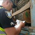 """З початку року на шляхах """"Київ-Чоп"""" і """"Київ-Ковель"""" патрульні затримали 38 вантажівок із нелегальною деревиною"""