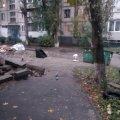 У Бердичеві пара кохалася у подвір'ї житлового району. Жінка сплатила штраф