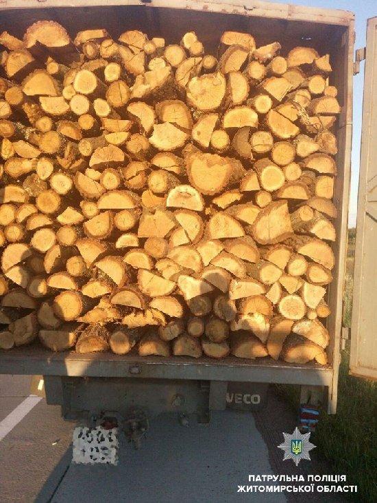 В області патрульні затримали вантажівку, вщент набиту деревиною. ФОТО
