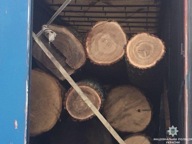 На Житомирщині патрульні затримали вантажівку «Volvo» із незаконною деревиною, що прямувала до Львова