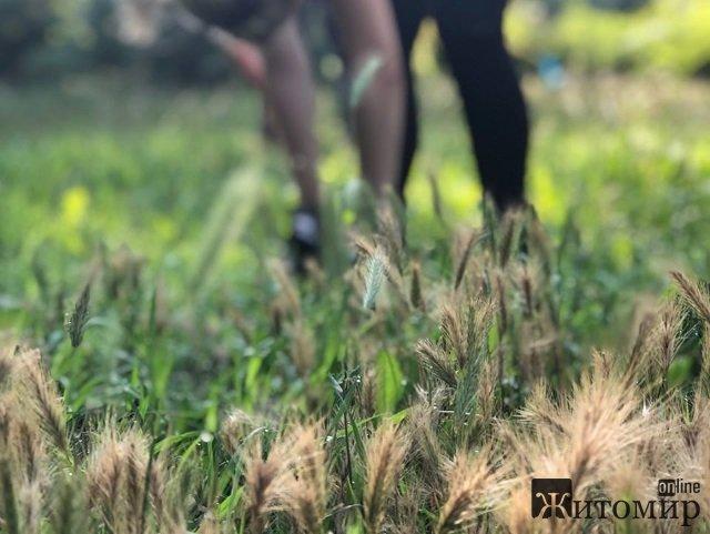 В Житомирі проводиться соціальний проект: безкоштовні тренування заради популяризації здорового способу. ФОТОРЕПОРТАЖ