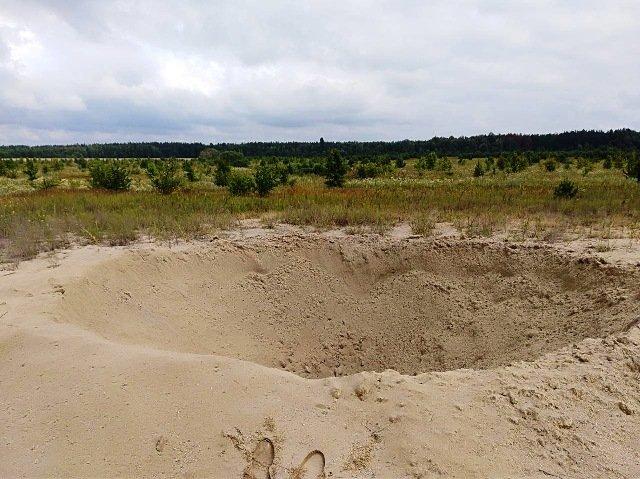 У Радомишльському районі рятувальники знищили 100-кілограмову авіабомбу та артснаряд