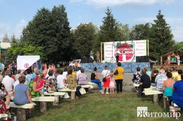 У Житомирській області на фестивалі гостей частували малиновим борщем