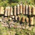Піротехніки ДСНС Житомирщини вилучили 373 вибухонебезпечні предмети
