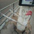 У Житомирі хтось поприв'язував стовпи. Аби не впали? ФОТО