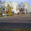 Житомирянка просить прибрати сміттєві баки з проїжджої частини по вул. Лесі Українки