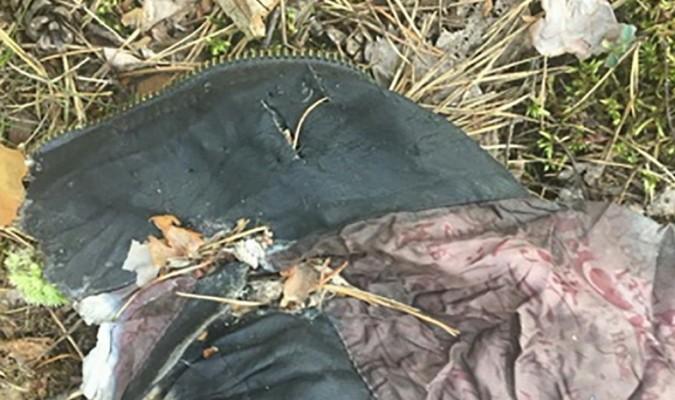 Поліція просить допомогти встановити особу чоловіка, рештки якого знайшли в лісовому масиві у Житомирській області