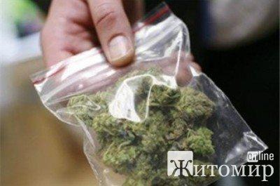 У Ємільчинському районі поліцейський у перехожого знайшов 120 рослин маку