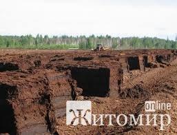 Влада міста Житомира хоче добувати торф на бурштиновому родовищі
