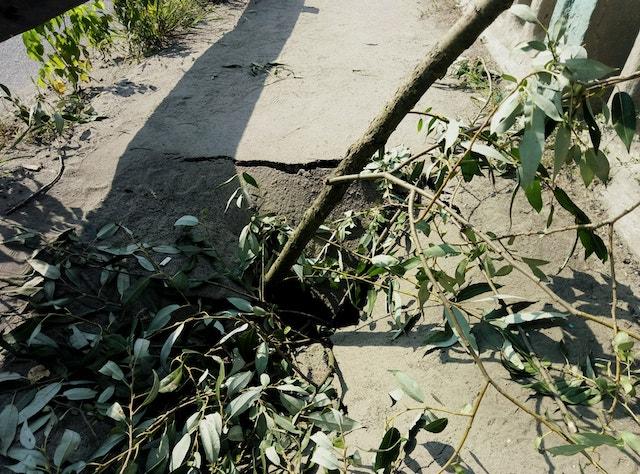 У Малині майже провалюється аварійний міст через Іршу. ФОТО