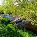 Жителі райцентру Житомирської області під час купання у ставку натрапили на потопельника