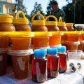 У Житомирі 16 серпня відбудеться ярмарок меду