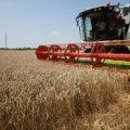 На Житомирщині завершили збір ранніх зернових культур