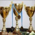 Житомиряни завоювали медалі на Чемпіонаті світу з середньовічного бою у Шотландії