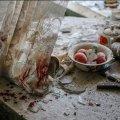 Недільний хоррор: в Бердичеві чоловік розтрощив голову товаришеві по чарці