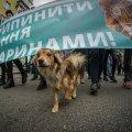 У Житомирі пройде марш за права тварин