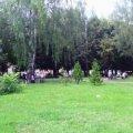 Житомирян закликають підписати петицію проти вирізання дерев у сквері на Лятошинського