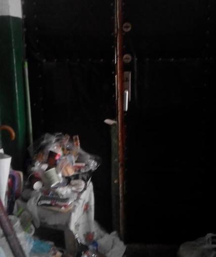 Антисанітарія, сморід та агресивні собаки: Бердичівляни жаліються на безлад, який влаштувала мешканка багатоповерхівки
