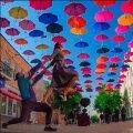 """""""Синім, жовтим та червоним"""" парасолькам радіють житомиряни по вул. Михайлівській. ФОТО"""