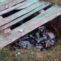 В Житомирі Замкову гору перетворюють у смітник. ФОТО