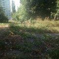 """""""Зеленбудівці"""" старанно працюють на площі Польовій у Житомирі. ФОТО"""
