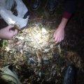 На Житомирщині продовжують порушувати правила рибальства