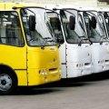 Житомирська міськрада може придбати автобуси, від яких нещодавно відмовилися