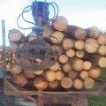 Два лісовози без документів затримали на Житомирщині