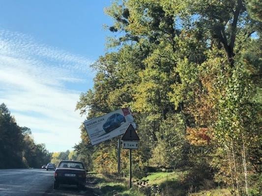 У Житомирі дерево впало на білборд. ФОТО