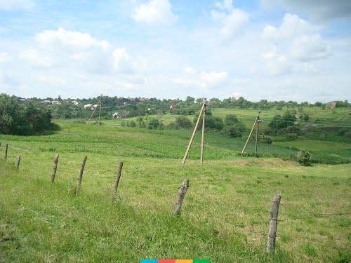 В селі Зарубинці Андрушівського району жителі сіл вимагають повернути їм пасовище. ВІДЕО