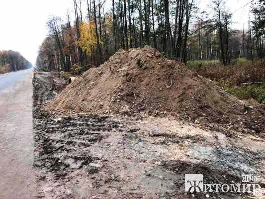 Група піротехнічних робіт знищила у Житомирській області 16 боєприпасів часів минулих війн. ФОТО