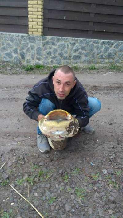 Житомирянин впіймав 22-кілограмового сома. ФОТО