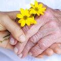 У Житомирі пройшла акція з нагоди Міжнародного дня людей похилого віку
