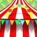 Цирку з виступами тварин у Житомирі - не бути!