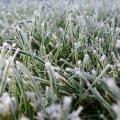 Минус 12 градусов и снег: синоптики предупредили о резком похолодании