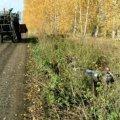 На Житомирщині п'яний водій мопеда не розминувся з комбайном