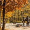 Золота осінь. Коростень. ФОТО