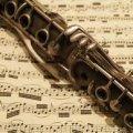 У Житомирі 21-23 листопада відбудеться фестиваль інструментальної музики «Сонячні кларнети»