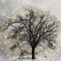 Какой будет погода в новогоднюю ночь: прогноз синоптиков