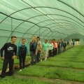 В Новоград-Волинському лісгоспі вирощується близько 2 мільйонів сіянців