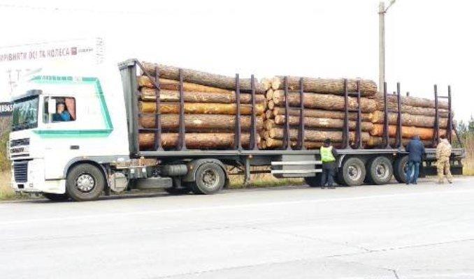 На Житомирщині проводяться заходи по боротьбі з незаконним перевезенням лісопродукції
