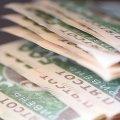 Основну частину боргу по заробітній платі утворено на підприємствах міст Коростеня (57,9%) та Малина (22,9%)