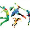 Спортивні події у Житомирі на вихідни. АНОНС